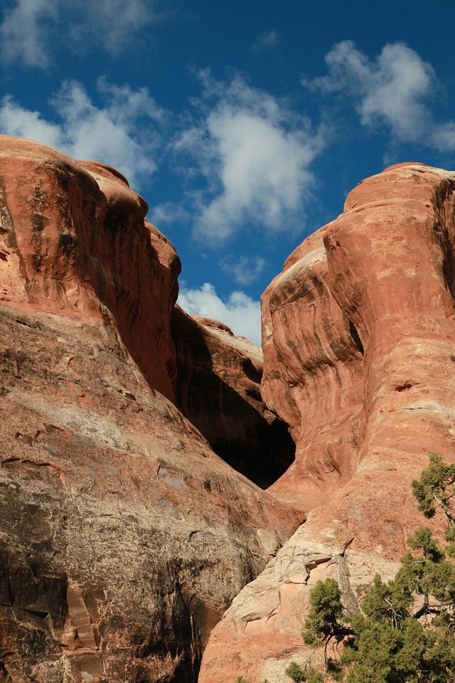 Canyon Wall View
