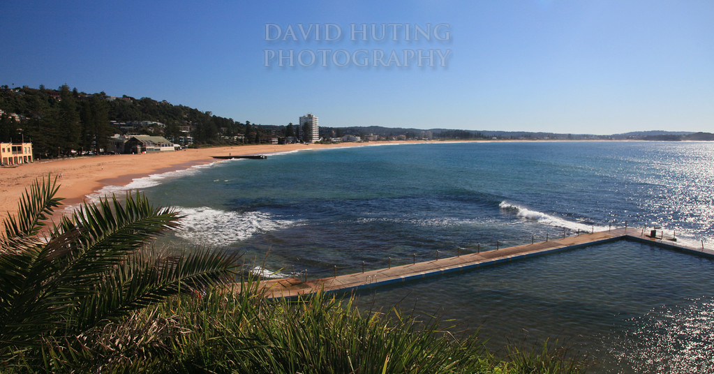 Dee Why Beach View