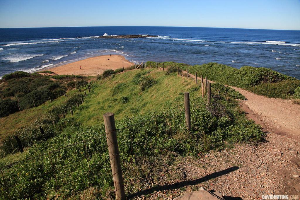 Long Reef Path Down LQW