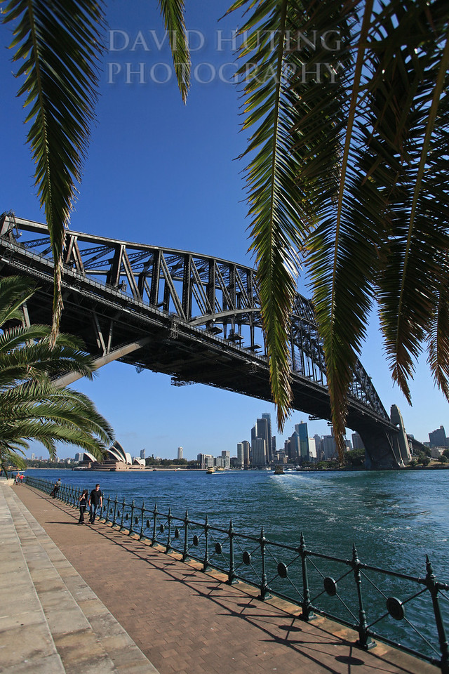 Glorious Sydney Afternoon