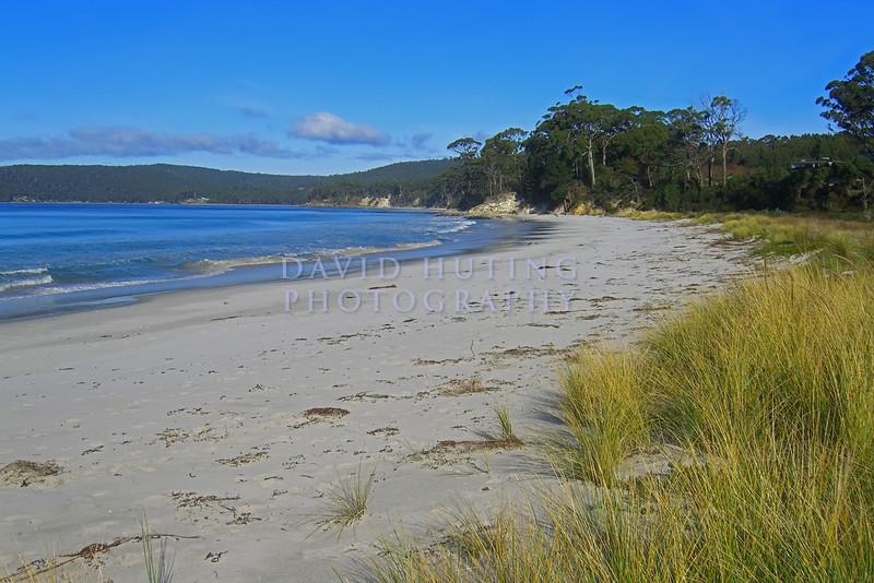 Tasmanian Beach View
