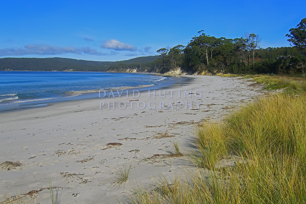 Tasmanian Beach View