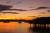 Before the Sunrise<br /> Hobart, Tasmania