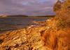 Shoreline near South Arm<br /> Hobart, Tasmania