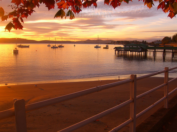 Sunrise on the Harbor<br /> Hobart, Tasmania