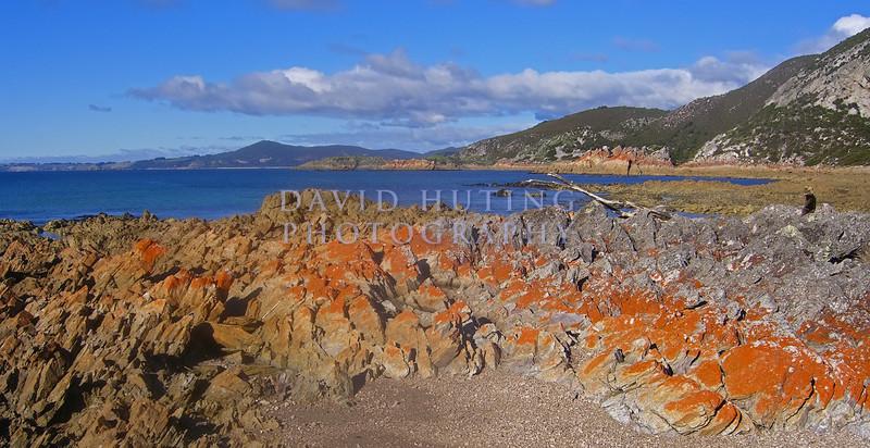 Rocky Cape Coastline View