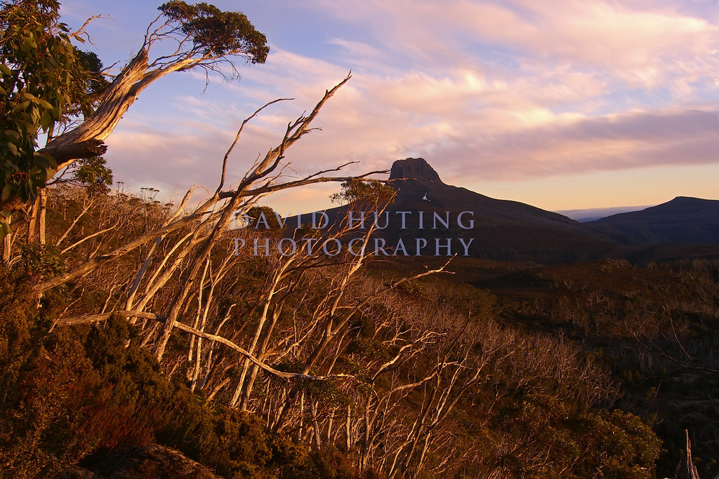 Sunset view of Barn's Bluff, in Cradle Mountain NP