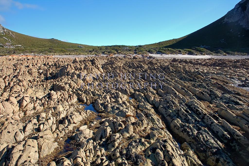 Rocky Cape View