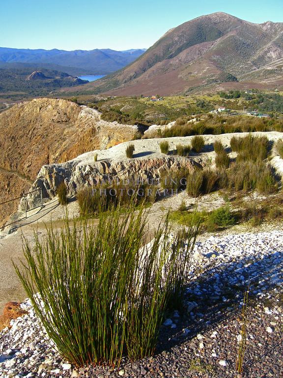 Tasmanian Inland View