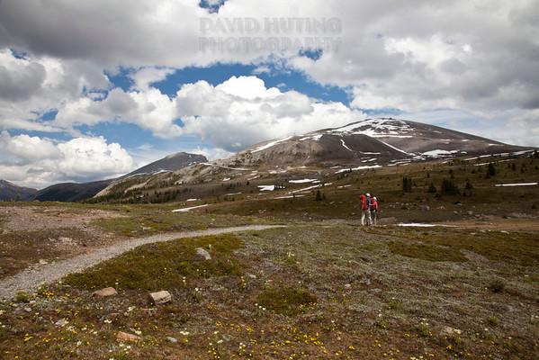 Hiking Sunshine Meadows