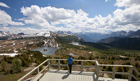 Sunshine Meadows Lookout