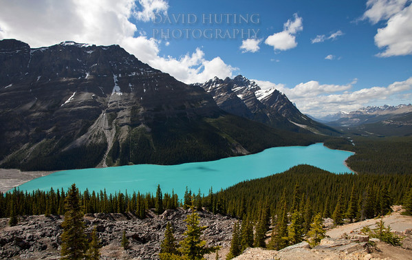 The iconic view of Peyto Lake as seen from the Bow Summit.