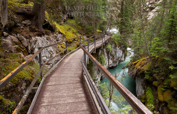 On the Walkway - Johnston Canyon