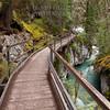 On the Walkway - Johnston Canyon