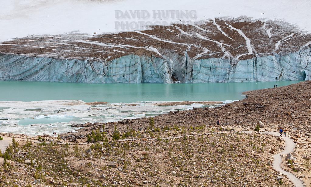 Path to the Glacier walk