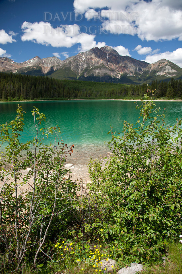 Patricia Lake Shoreline View Vert