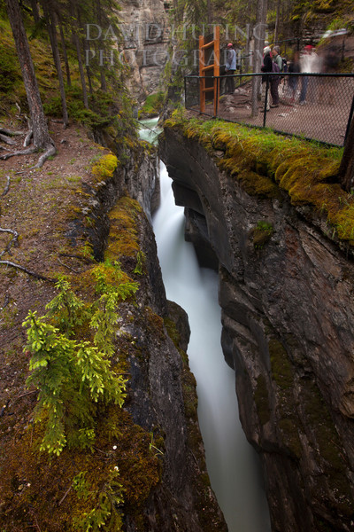 Maligne Canyon Split