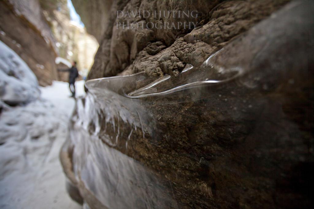 Ice Lining - Path View