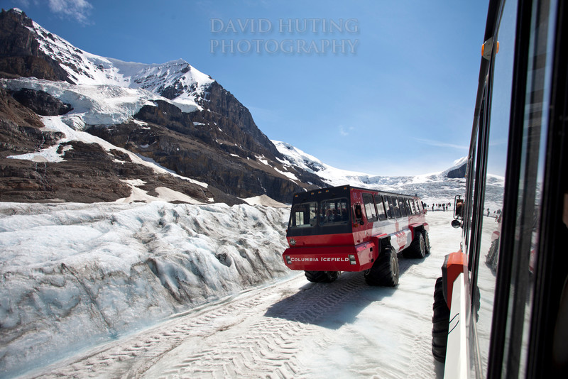 Icefield Explorer Driving