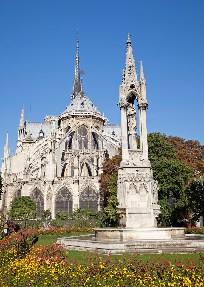 Notre Dame flower view