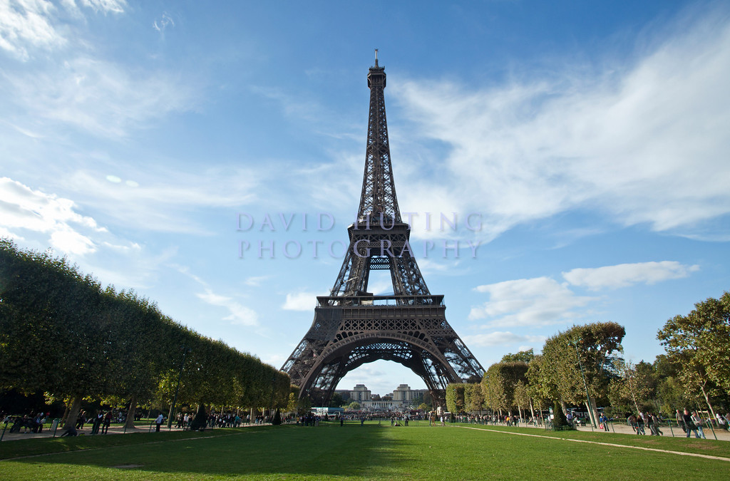 Eiffel Tower Sunny Field