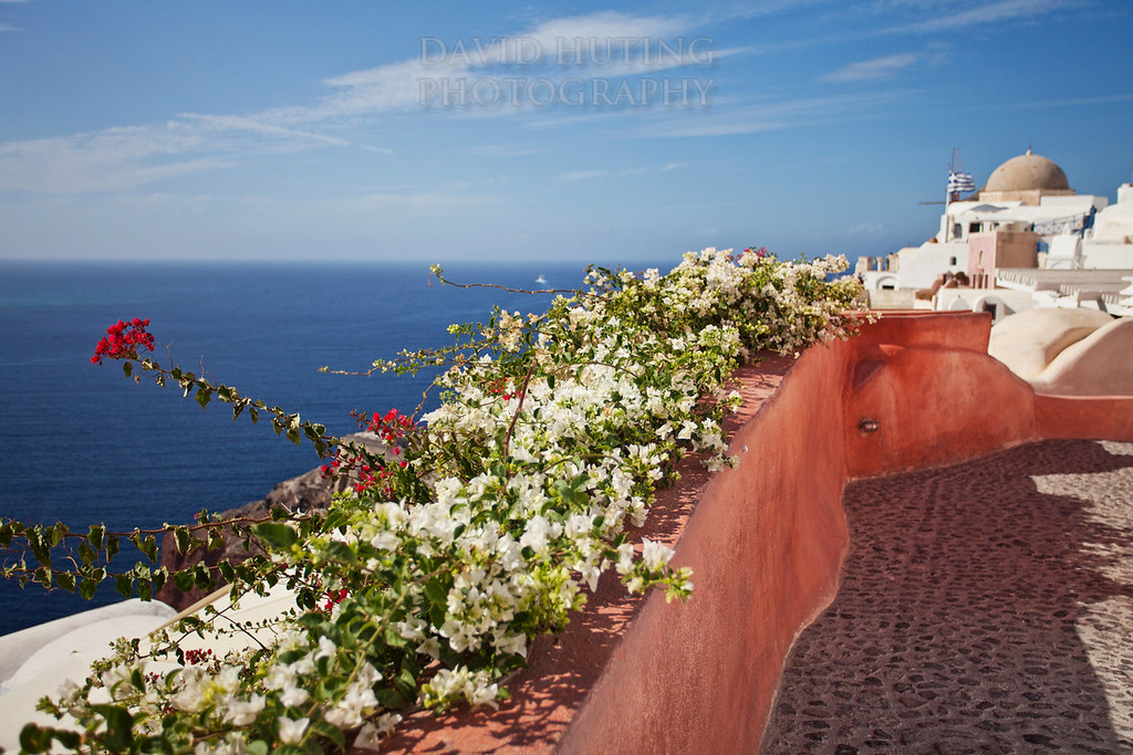 Oia Flowers Path
