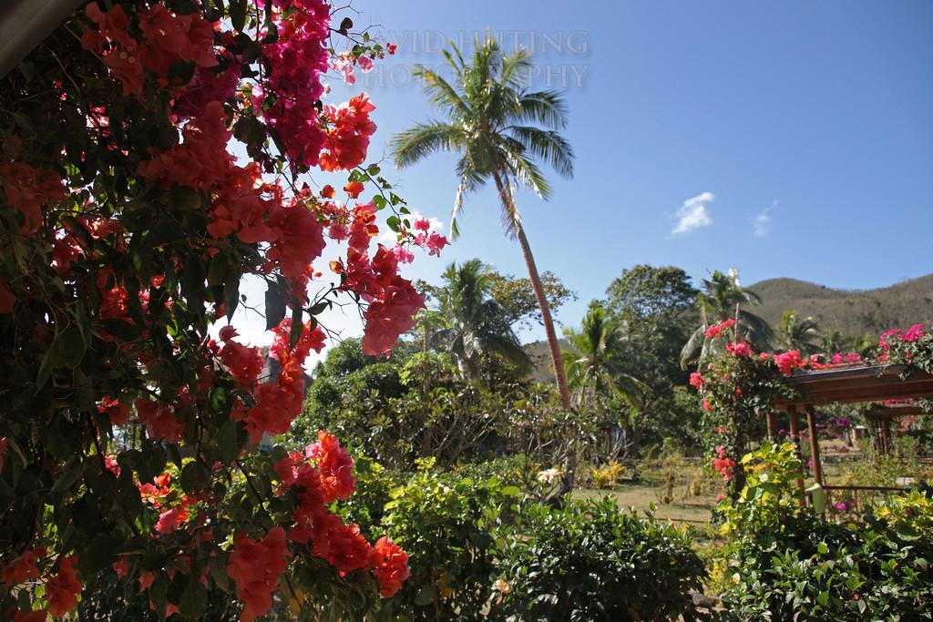 Botaira Paradise View