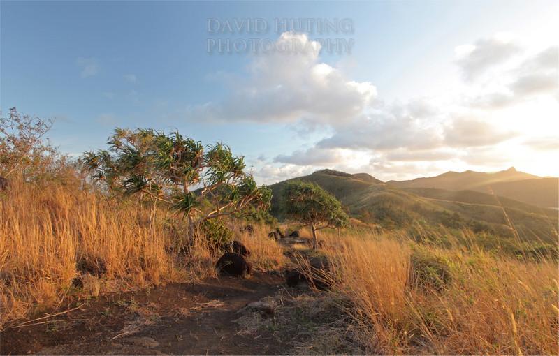 Sunrise Path View