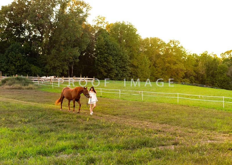 On your farm with your horse