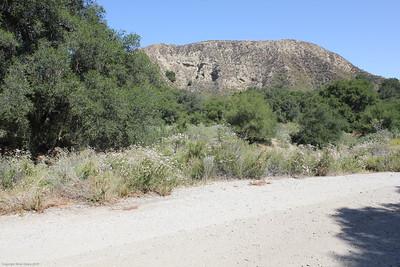 Santa Clarita - Rancho Deluxe