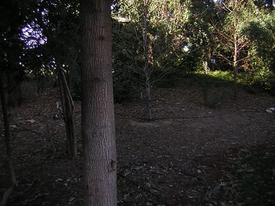 WB- Village Grassy Knoll - 6