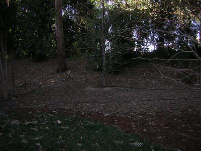WB- Village Grassy Knoll - 9