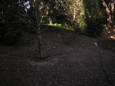 WB- Village Grassy Knoll - 7