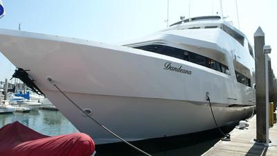 THE DANDEANA (marina del rey)