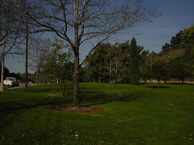 elysian park area 2 - 1