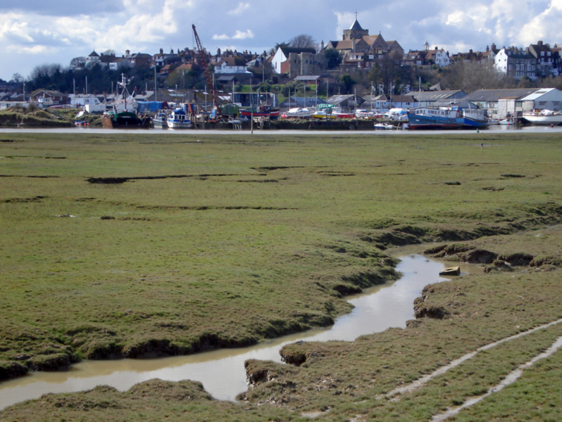 2) Potential view point from Flickr - Lindsey Sellors - RYE long view - 2009-02-17
