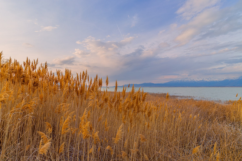 Over the Fields to Utah Lake