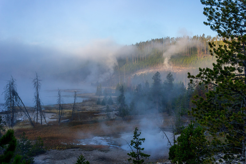 Steam rises from the ground in North Yellowstone