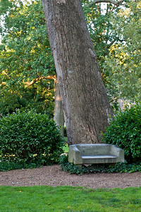 UNC_CommonsBench_6162012