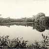Hoxie's Mill Pond looking South. (Photo ID: 27927)