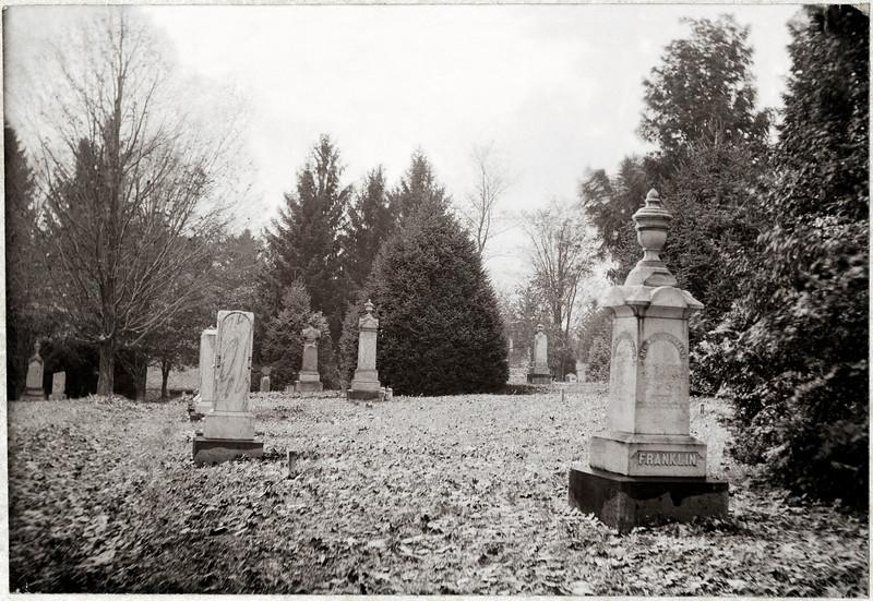 Rev. William Franklin Lot, West Genoa Cemetery, King Ferry, N.Y. (Photo ID: 34488)