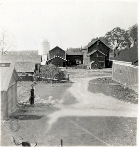 Fessenden barn's looking North from the house.  King Ferry, NY. (Photo ID: 29352)