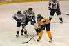 Hockey<br />  January 17, 2009