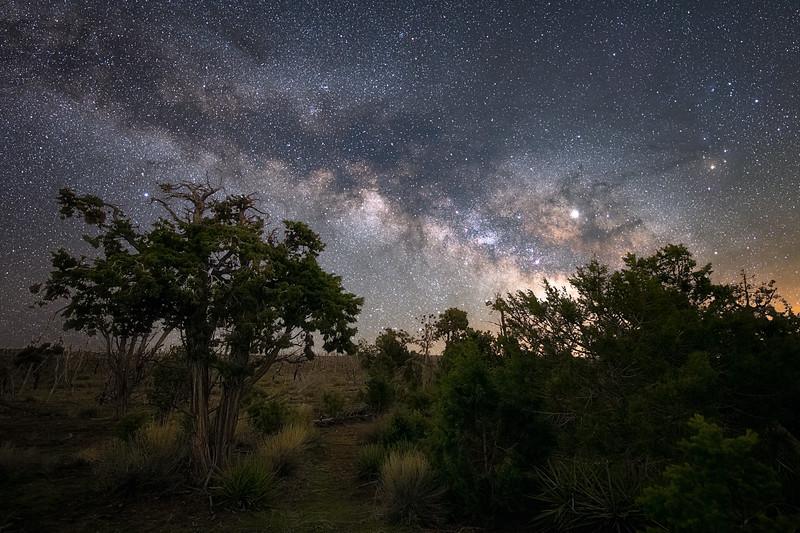Near Mesa Verde