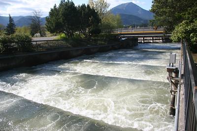 Bonneville Dam and Fish Hatcherie