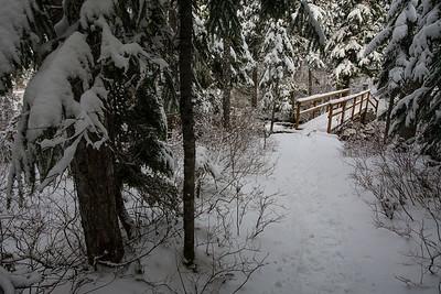 BC-2008-034: Joffre Lakes Provincial Park, Sea to Sky Region, BC, Canada