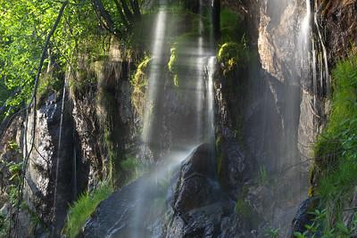 BC-2011-140: Mount Revelstoke National Park, Rockies, BC, Canada