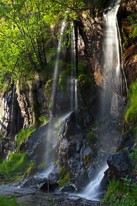 BC-2011-143: Mount Revelstoke National Park, Rockies, BC, Canada