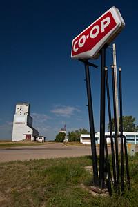 SK-2010-036: Hodgeville, Lawtonia 135, SK, Canada