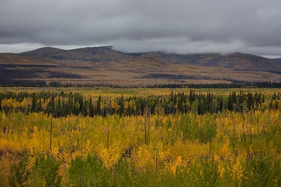 YT-2012-030: Klondike Highway, Klondike Region, YT, Canada